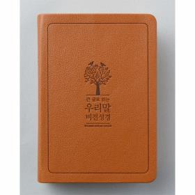 큰글우리말 비전성경 DKV1906 (소) 단색 - 브라운 (4판)
