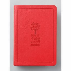 큰글우리말 비전성경 DKV1906 (소)단색 - 레드(4판)