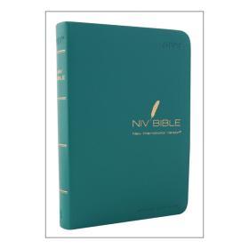 NIV바이블-(소/비닐/무지퍼)-블루그린