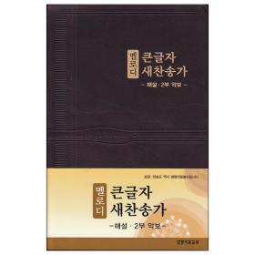 뉴 새찬송가 큰글 해설 멜로디(대/비닐)-브라운