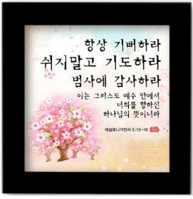 성경 말씀액자 - 항상기뻐하라 쉬지말고 기도하라 범사에 감사하라 (B008)