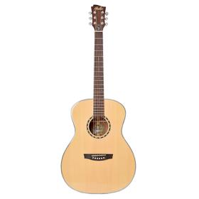 [힐러뮤직]Healer Acoustic Guitar HO-1000 (힐러기타)