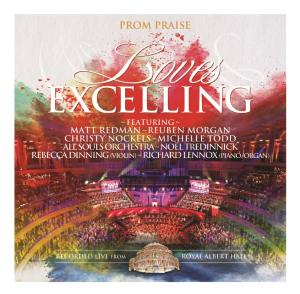 ALL SOULS ORCHESTRA-LOVES EXCELLING (CD)